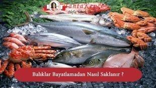 Balıklar Bayatlamadan Nasıl Saklanır ?