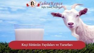 Keçi Sütünün Faydaları ve Yararları