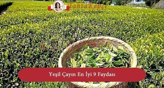 Yeşil Çayın En İyi 9 Faydası ve Yararı