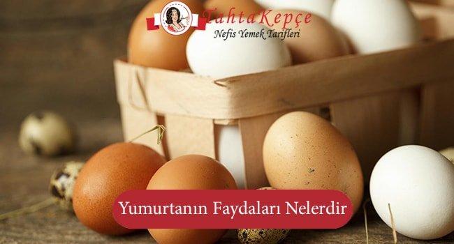 Muhteşem Bir Gıda olan Yumurtanın Faydaları Nelerdir?